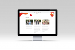 Bram&deVlam Reclamebureau Eindhoven Website PlatOOlab Online Web Projecten