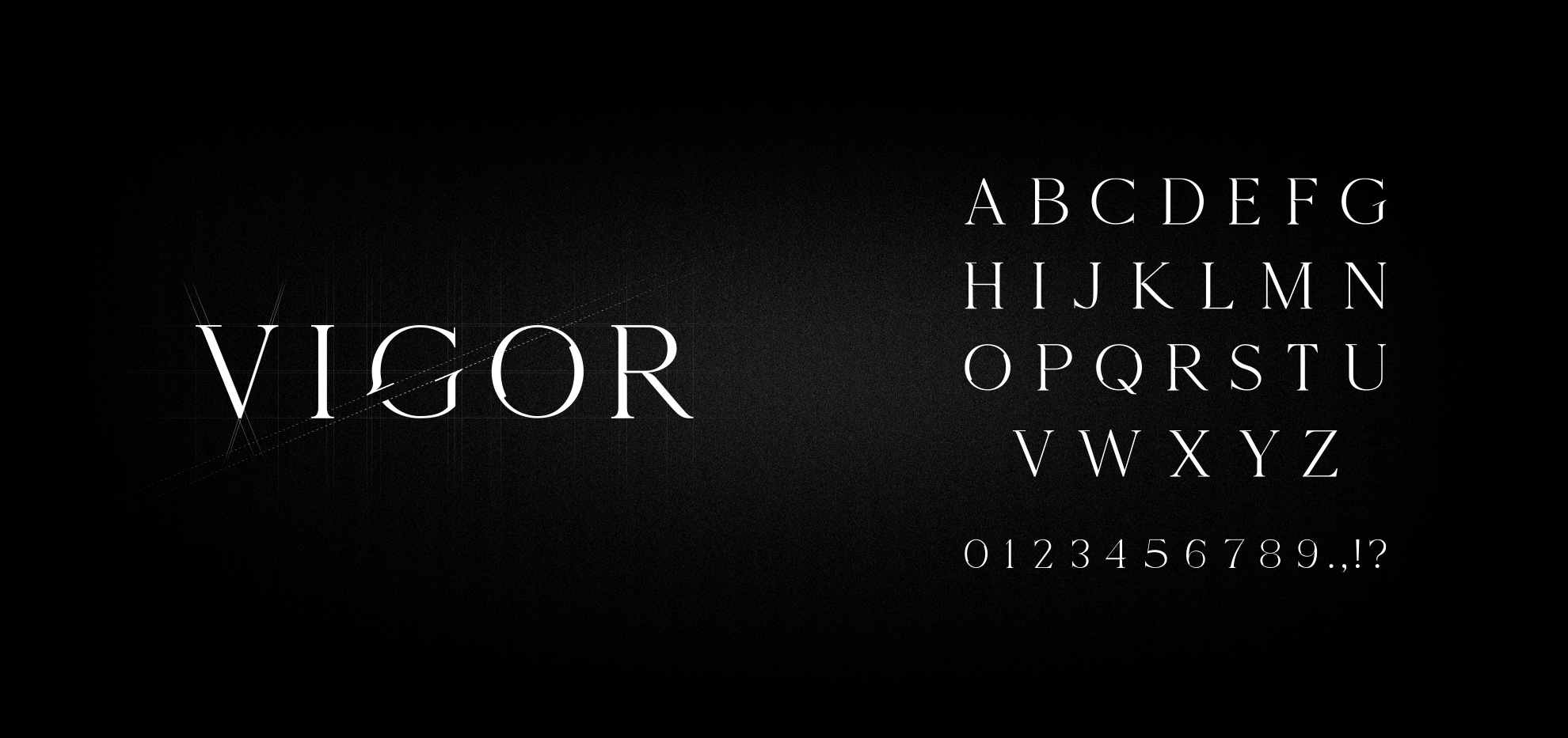 Vigor typografie